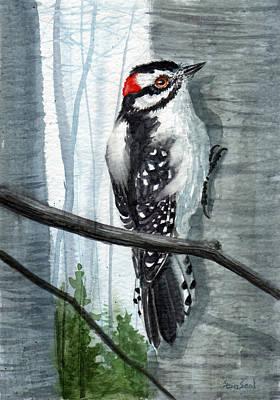 Woodpecker Painting - Downey Woodpecker by Sean Seal
