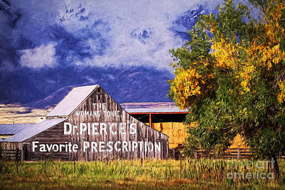 Shed Digital Art - Dr. Pierce's Favorite Prescription Barn by Priscilla Burgers