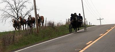 Amish Community Photograph - Draft Horses And Amish by R A W M