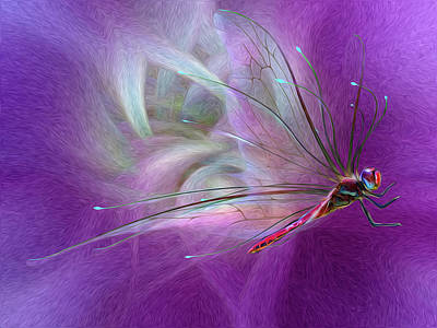 Dragon Fly Print by Suzanne Williams