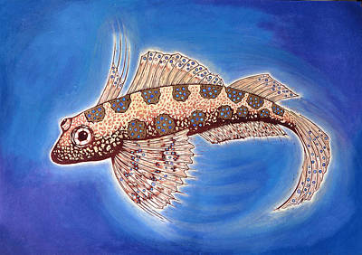 Fish Underwater Drawing - Dragonet Fish by Nat Morley