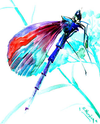 Beach House Drawing - Dragonfly by Suren Nersisyan