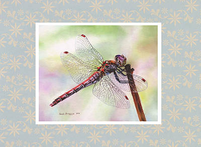 Dragonfly With Pattern Border Original by Sarah Stribbling