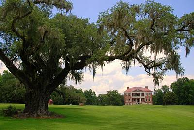 Drayton Hall Plantation Charleston Print by Susanne Van Hulst