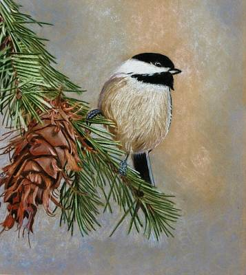 Chickadee Drawing - Dreaming Of Spring by Lori Hanks