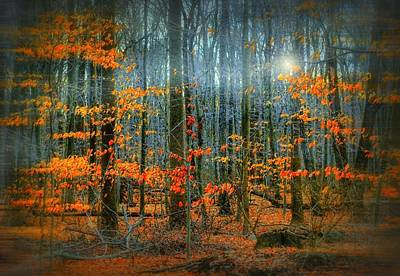 Dreams Fall Hard Print by Diana Angstadt
