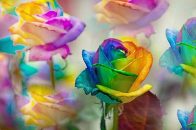 Dreams Of Rainbow Rose Print by Jenny Rainbow