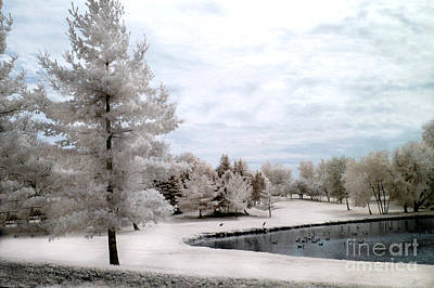 Dreamy Surreal Infrared Pond Landscape Nature Scene  Print by Kathy Fornal