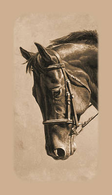 Chestnut Horse Painting - Dressage Horse Sepia Phone Case by Crista Forest