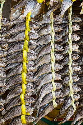 Food Photograph - Dried Fish by James BO Insogna
