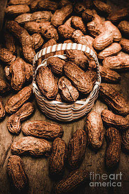Dried Whole Peanuts In Their Seedpods Print by Jorgo Photography - Wall Art Gallery