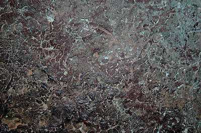 Drift Copper Print by LeeAnn McLaneGoetz McLaneGoetzStudioLLCcom