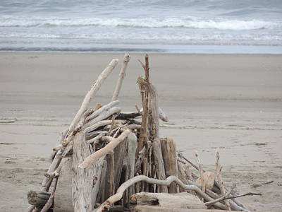 Agate Beach Oregon Photograph - Driftwood Fort by Traci Hallstrom