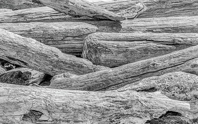 Driftwood Print by Joseph Smith