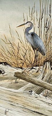 Driftwood Splendor Original by James Williamson