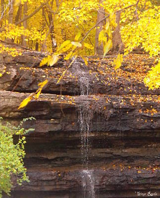Creve Coeur Park Photograph - Dripping Springs Waterfall by Ginger Repke