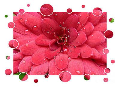 Drops Upon Raindrops 1 Print by Carol Groenen
