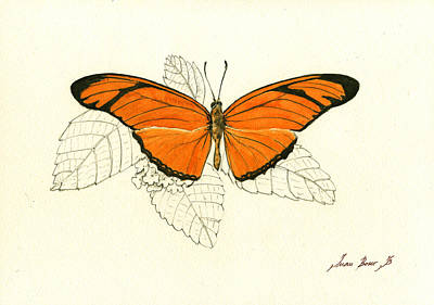 Insect Painting - Dryas Iulia, Orange Julia Butterfly by Juan Bosco