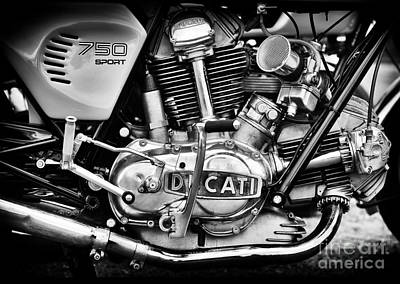 Bicycle Photograph - Ducati 750 Sport by Tim Gainey