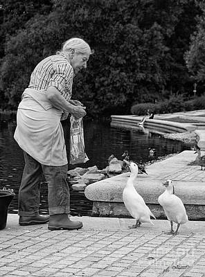 Manipulation Photograph - Duck Feeding by Jutta Maria Pusl
