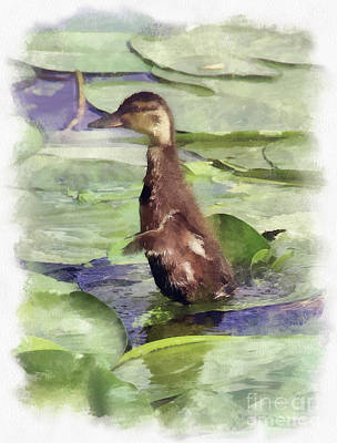 All Faa Mixed Media - Duckling by Sergey Lukashin