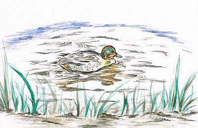 Duck's Reflection  Print by Teresa White