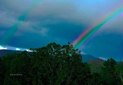 Pink Black Tree Rainbow Photograph - Dueling Rainbows by DigiArt Diaries by Vicky B Fuller