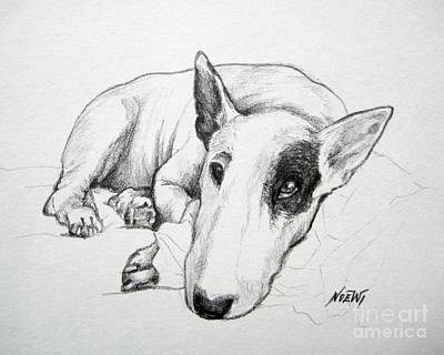 Duke Original by Jindra Noewi