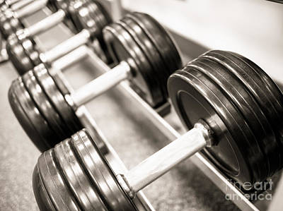 Dumbbell Weights On A Rack Print by Paul Velgos