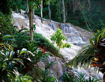 Dunn's River Falls Jamaica Print by Cliff Wassmann
