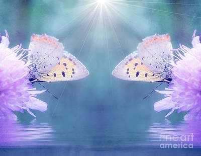 Duo Butterfly Print by SK Pfphotography