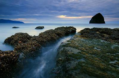 Seaweed Photograph - Dusk At Kiwanda  by Mike  Dawson