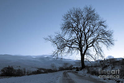 Winter-landscape Photograph - Dusk In Scottish Highlands by David Bleeker