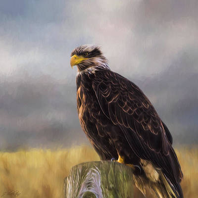 American Eagle Painting - Eagle Art - Be Who You Are by Jordan Blackstone