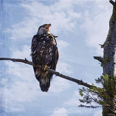 Jordan Painting - Eagle Art - Deserves To Be Heard by Jordan Blackstone