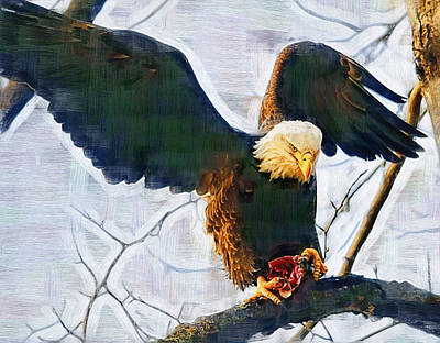 American Eagle Painting - Eagle On A Tree With Dinner by Clarence Alford