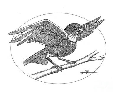 Bird And Worm Drawing - Early Bird by Jim Rehlin