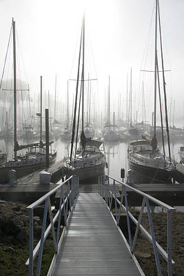Early Morning On The Docks Print by Laurie With