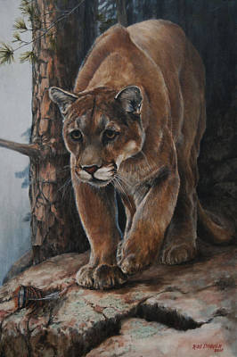 Cougar Painting - Early Morning Turkey Hunt by Rob Dreyer AFC