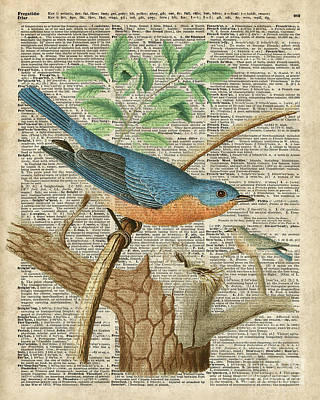 The Trees Mixed Media - Eastern Blue Birds by Jacob Kuch