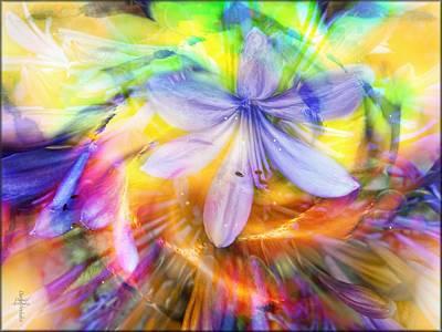 Garden Flowers Photograph - Eden Sun Flowers  by Daniel  Arrhakis