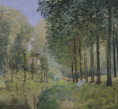 The Woods Painting - Edge Of The Wood by Alfred Sisley