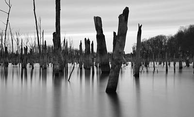 Stark Photograph - Eerie Lake by Jennifer Ancker