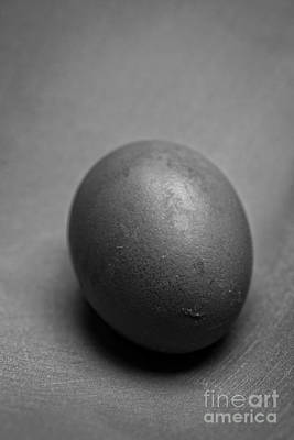 Clay Photograph - Egg Black And White by Edward Fielding