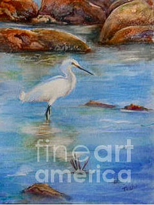 Malibu Painting - Egret At Malibu Beach by Patricia Pushaw