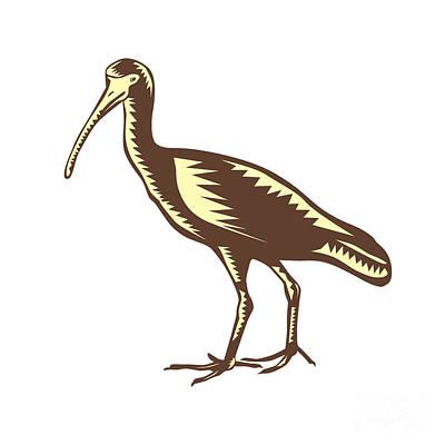 Egret Heron Crane Side Woodcut Print by Aloysius Patrimonio