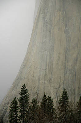 Yosemite National Park Photograph - El Capitan, Yosemite National Park by André Leopold