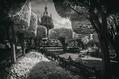 el Jardin Print by Sean Foster