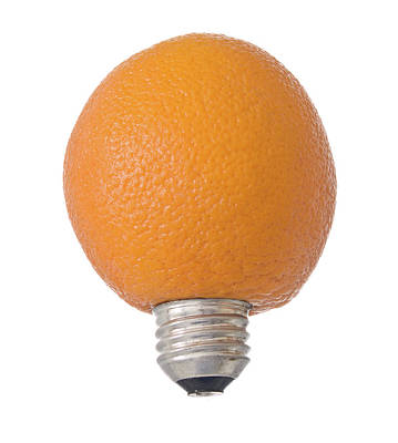Light Lunch Photograph - Electric Orange by Jim DeLillo