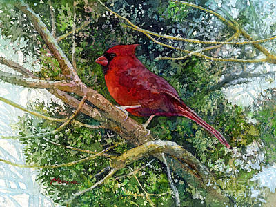 Cardinal Painting - Elegance In Red by Hailey E Herrera